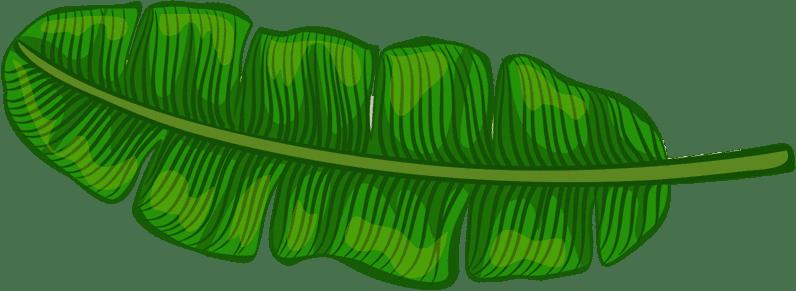 Green Leaf | Pasadena Childrens Dentistry